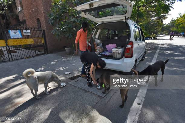 A woman feeds stray dogs on day eleven of the 21day nationwide lockdown to curb the spread of coronavirus at New Friends Colony on April 4 2020 in...