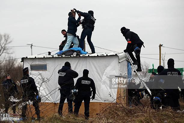 A woman fights with a police officer as she is removed from the top of a hut as police clear the 'jungle' migrant camp on March 01 2016 in Calais...
