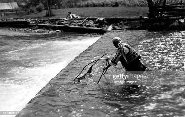 Woman fishing above a weir Bistrita Valley Moldavia northeast Romania c1920c1945 Depicting customs and traditional labour in the rural Carpathian...