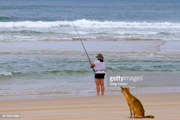 Woman fishing with dingo dog waiting