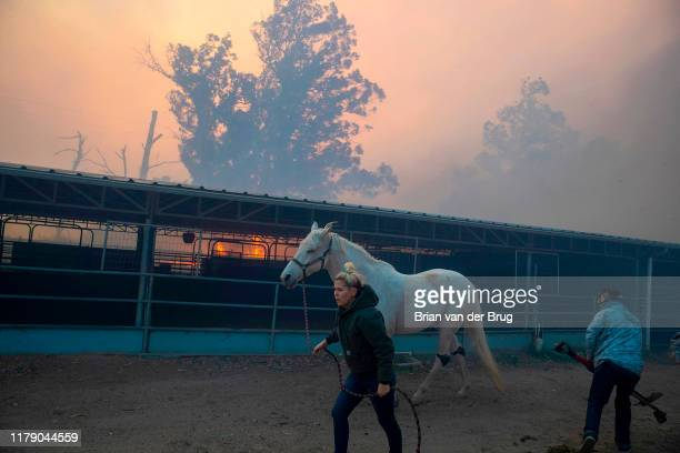 A woman flees Castle Rock Farms with her horse as the Easy fire approaches October 30 2019 in Simi Valley California Fueled by the Santa Ana winds...