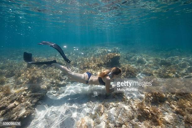 Femme plongée libre entre aux algues dans l'eau