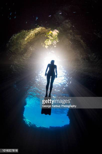 woman free-diving, low angle view, swallow cave, vavau, tonga, fiji - fiji stock pictures, royalty-free photos & images