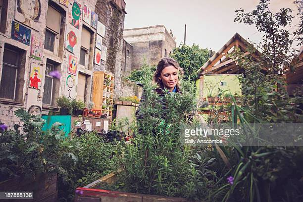 Woman gardening in a city garden