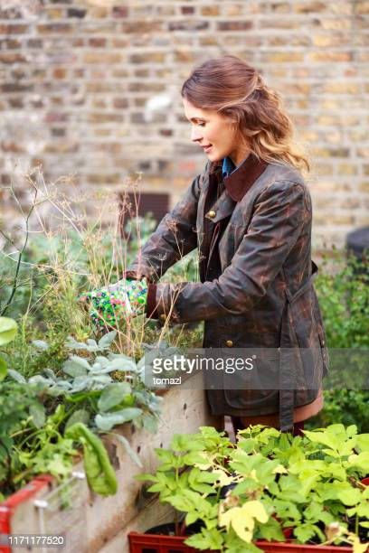woman gardening in the city - one woman only stock pictures, royalty-free photos & images