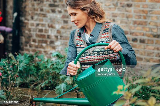 woman gardening - watering stock pictures, royalty-free photos & images