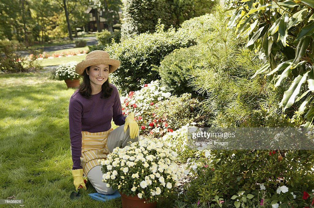 Woman gardening : Stockfoto