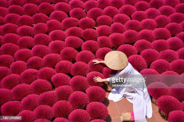 woman gathering dried incense sticks, hanoi, vietnam - incense coils stock pictures, royalty-free photos & images
