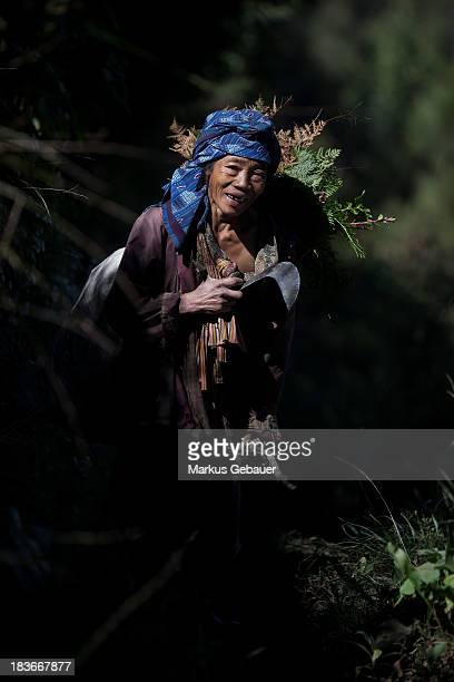 CONTENT] A woman gathering plants at tengger massif East Java Indonesia