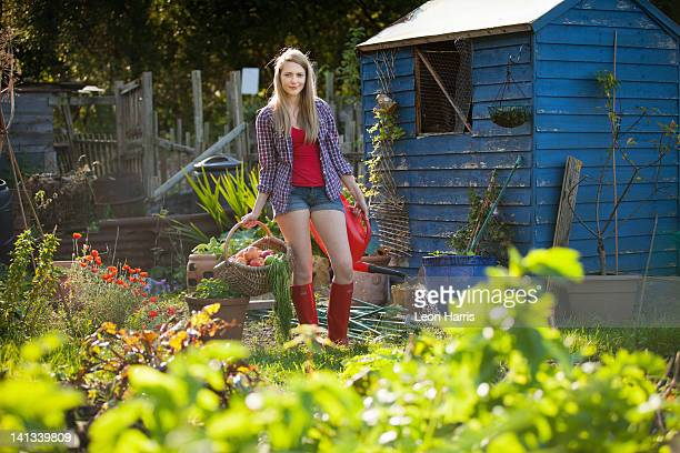 woman gathering vegetables in garden - shed stock pictures, royalty-free photos & images