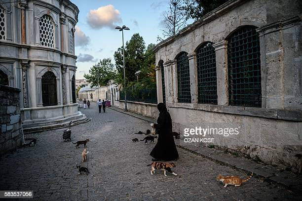 A woman gives food to stray cats near Eyup sultan mosque on July 26 2016 at Eyup district in Istanbul following the failed military coup attempt of...