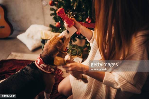 Frau geben Weihnachtsgeschenk zu niedlichen Welpen am Weihnachtstag
