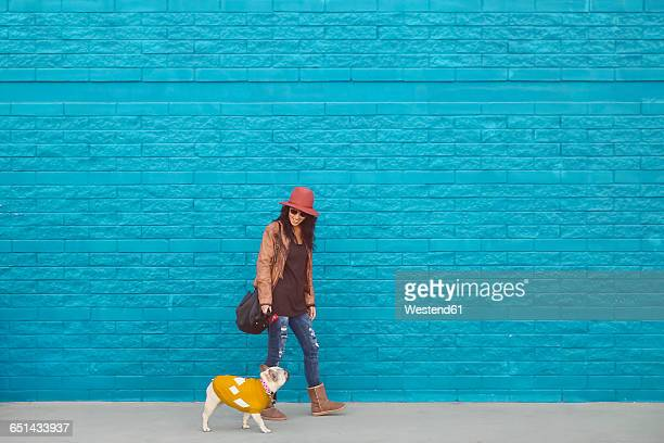 Woman going walkies with her French bulldog in front of blue wall