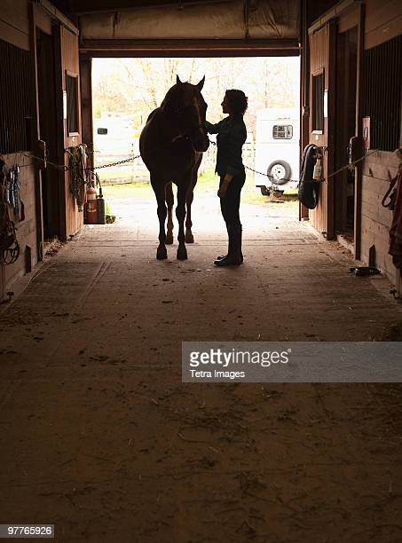 woman grooming horse - 動物調教師 ストックフォトと画像