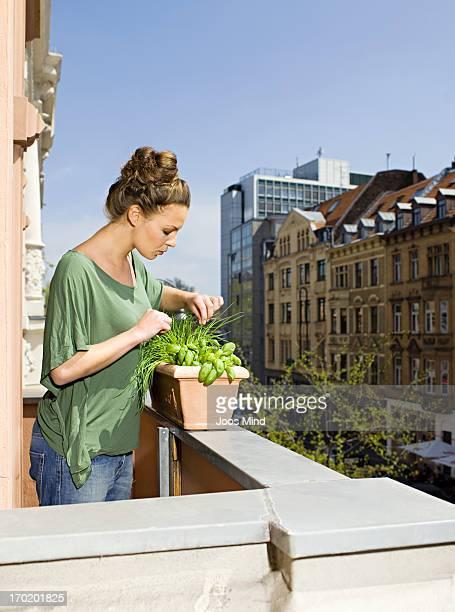 woman growing herbs on city balcony