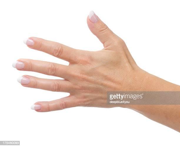 Main de femme avec clous sur blanc