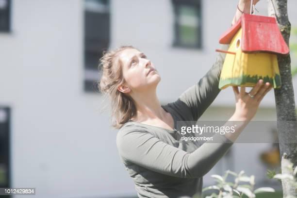woman hanging a birdhouse on a tree in the garden - vogelhäuschen stock-fotos und bilder