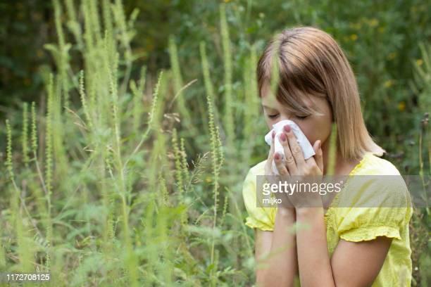 frau hat ein problem mit pollenallergie - ambrosia stock-fotos und bilder