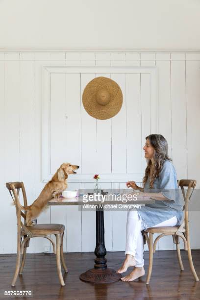 Woman having breakfast with her pet dog, long haired dachshund