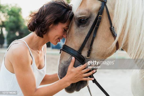 woman head to head with riding horse - pferd stock-fotos und bilder