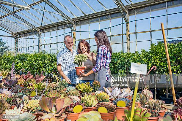 Woman helping choosing plants to mature couple at garden center