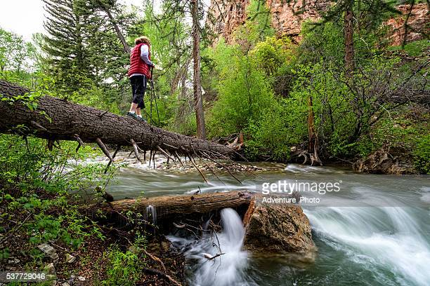 woman hiker crosses creek on log - railroad crossing stock pictures, royalty-free photos & images