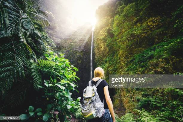 woman hiker watching the waterfall on madeira island - lareira stock pictures, royalty-free photos & images