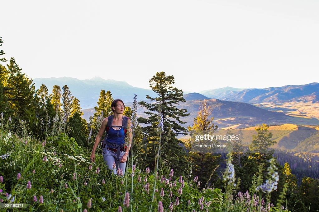Woman hikes in Montanas backcountry : Stock Photo