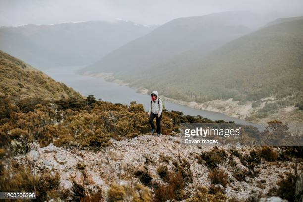 woman hikes in rain along mountain near cobb reservoir, new zealand - kahurangi national park bildbanksfoton och bilder