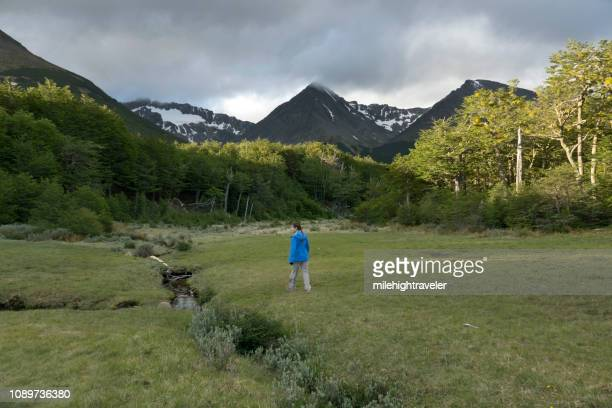 woman hikes martial mountains glacier hike peat bog subantarctic forest ushuaia argentina - milehightraveler stock pictures, royalty-free photos & images