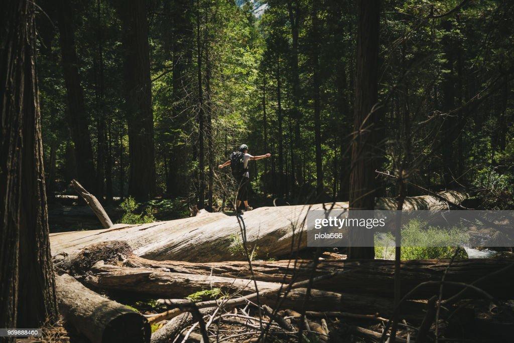 Frau Wandern am Kings Canyon Nationalpark, Kalifornien : Stock-Foto