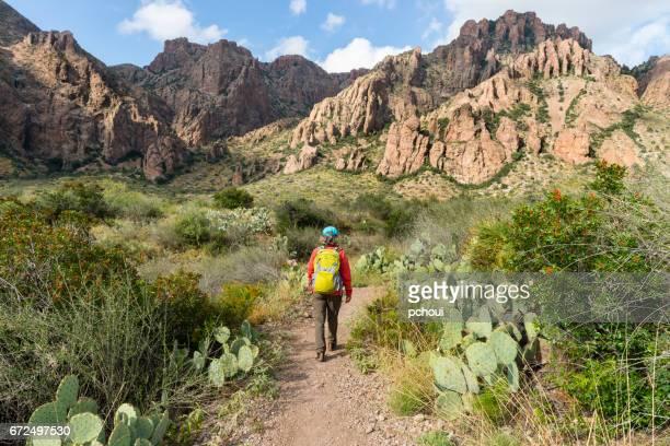 vrouw die in het nationale park van de kromming van de grote kromming, texas, de v.s. wandelt - texas stockfoto's en -beelden