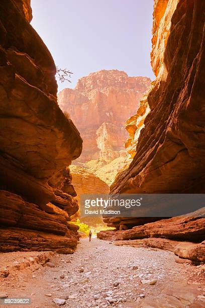 woman hiking in blacktail canyon. - grand canyon national park stock photos and pictures