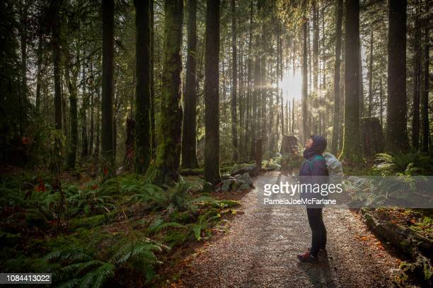 woman hiking in forest during rainfall, sunlight streams in background - vancouver canada stock pictures, royalty-free photos & images