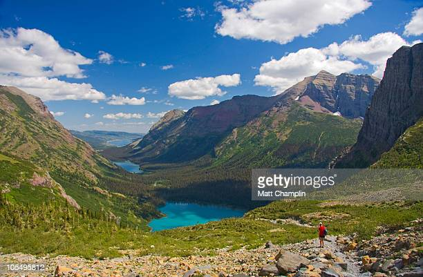 woman hiking in glacier national park - saskatchewan stock pictures, royalty-free photos & images