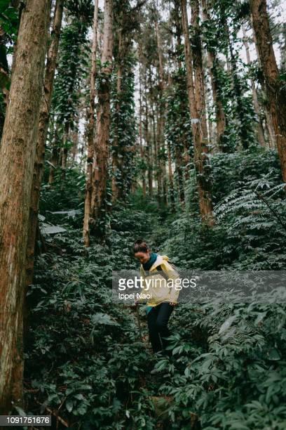 Woman hiking in lush green rainforest