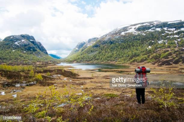 ノルウェーの山でハイキングする女性 - スタバンゲル ストックフォトと画像
