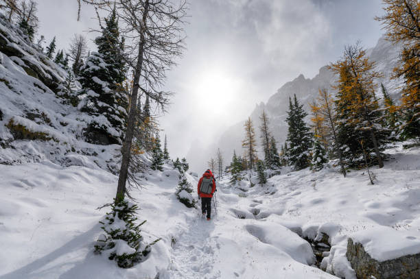Woman hiking in the snow,Field,Canada