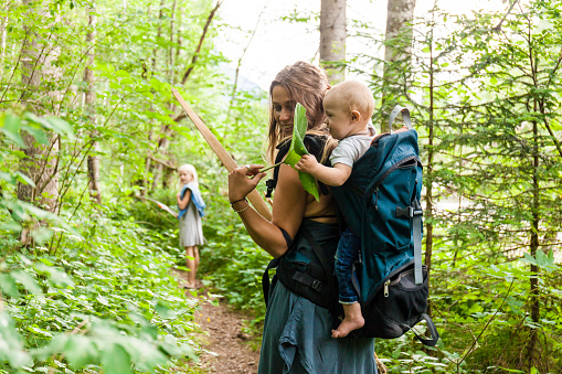 Woman hiking in the woods showing large leaf to baby boy in backpack - gettyimageskorea