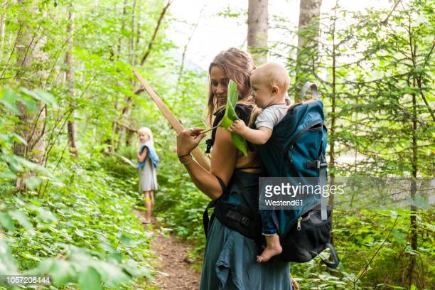 woman hiking in the woods showing large leaf to baby boy in backpack - wandern stock-fotos und bilder