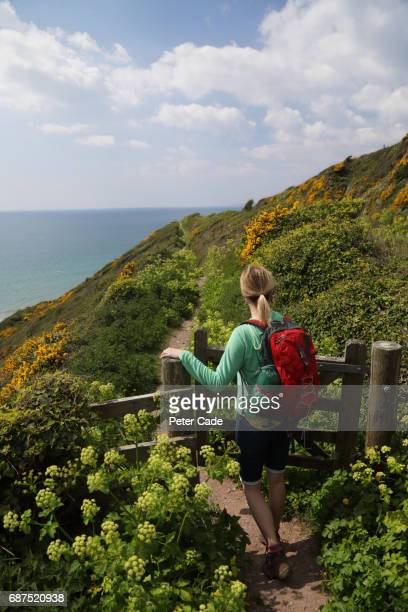 woman hiking on coastal path - cornwall england stock pictures, royalty-free photos & images