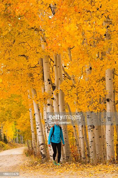 Woman hiking on path in fall colors