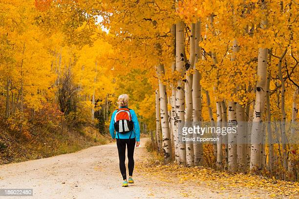 woman hiking on path in fall colors - steamboat springs colorado stock photos and pictures