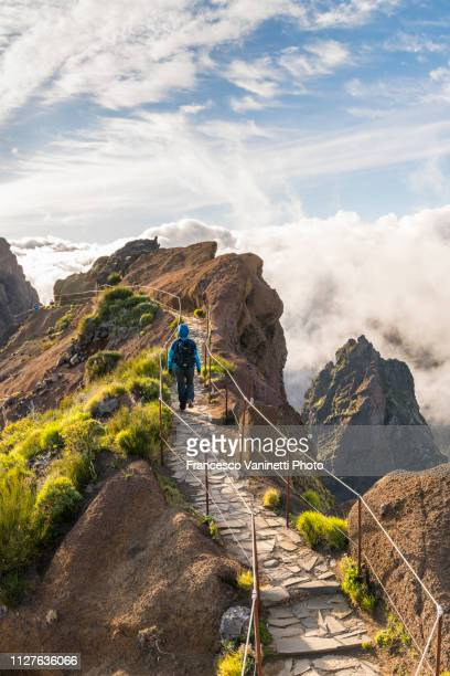 woman hiking on pr1 trail, madeira. - madeira island stock photos and pictures