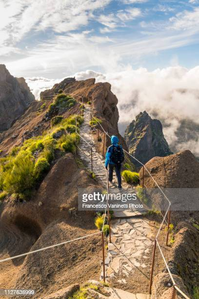 woman hiking on pr1 trail, madeira. - lareira stock pictures, royalty-free photos & images