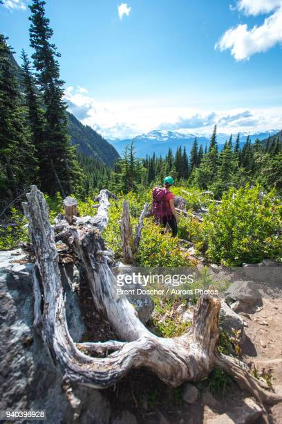 woman hiking on trail in british columbia, canada - garibaldi park stock pictures, royalty-free photos & images