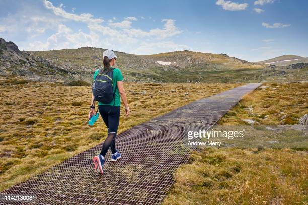 woman hiking or walking on footpath, track or elevated walkway through an idyllic mountain landscape, kosciuszko national park, australia - elevated walkway stock pictures, royalty-free photos & images