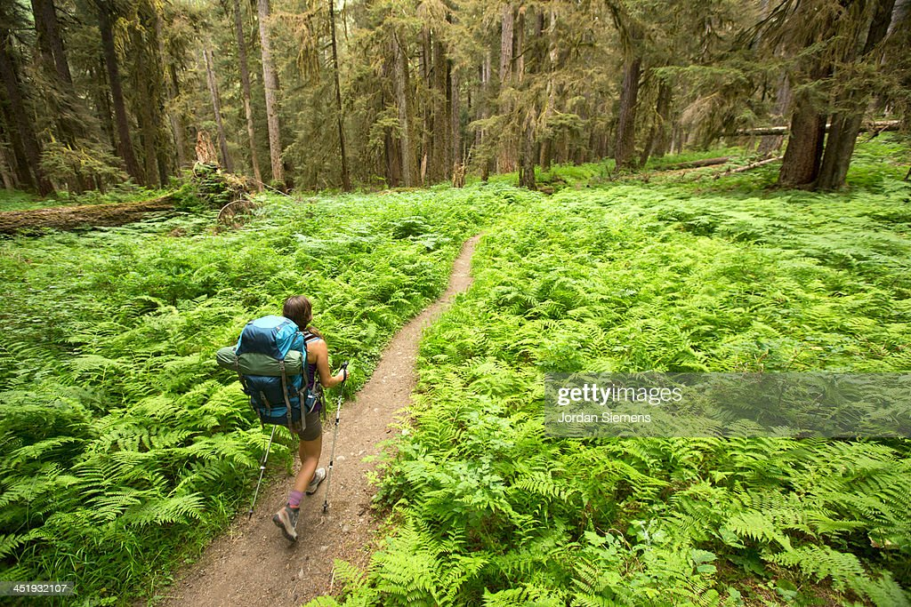 Woman hiking outdoors : Stock Photo