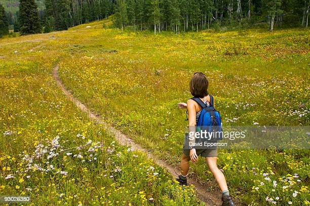 woman hiking - steamboat springs colorado - fotografias e filmes do acervo
