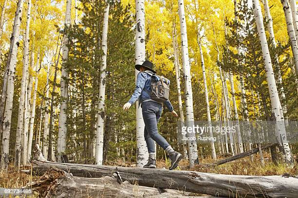 Woman hiking through rural setting, rear view, Flagstaff, Arizona, USA